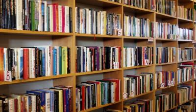 böcker mjolby 2008_elin karlsson
